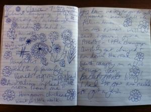 Clara notes 2
